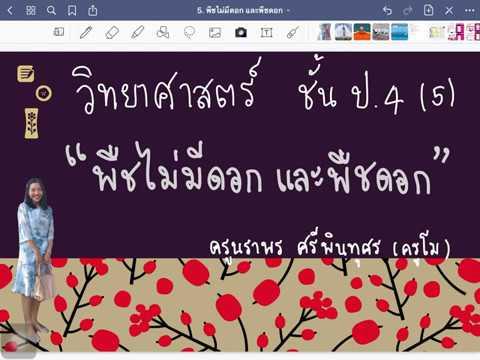 วิทย์ ป.4 (5) เรื่อง พืชไม่มีดอกและพืชดอก