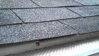 How water drains off a shingle.