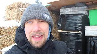 Kid's Moment Video, Feb 14, 2021, Shelter