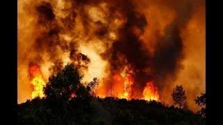 加州山火犹如炼狱逃生难,超1000人失踪|20181116《一周龙珠汇》第19期