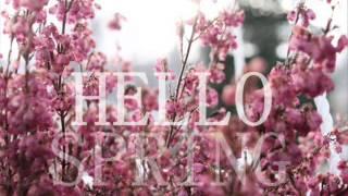 R3lax - Hello Spring