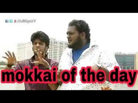 mokka of the day adithya tv