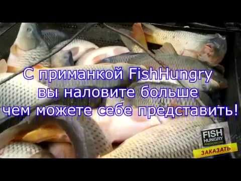 Активатор клева fish hungry отзывы - YouTube