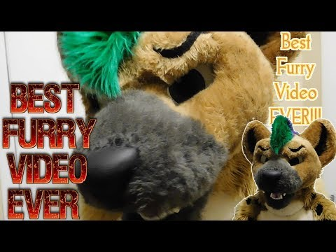 THE BEST FURRY VIDEO EVER