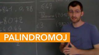 Palindromoj - IJK 2020 en la reto
