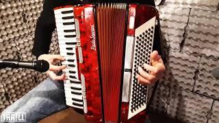 Cicha woda (THR!LL akordeon cover)
