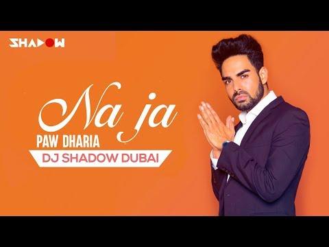 Pav Dharia | Na Ja | DJ Shadow Dubai Remix
