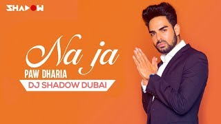 Pav Dharia Na Ja DJ Shadow Dubai Remix