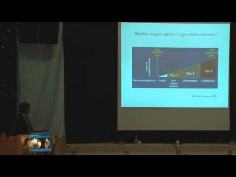 Rasmus Foldbjerg - Nanotechnology - reasons for concern ?