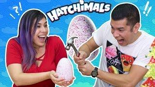 WILL IT HATCH? Hatchimals Surprise Egg