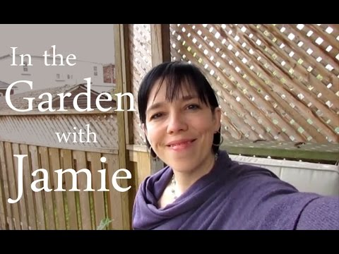 Spring Garden Tour: Jamie Ridler Studios (Early May, Toronto)