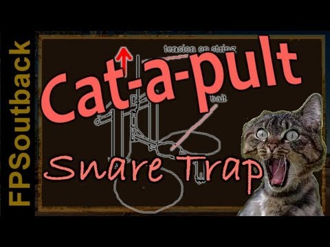 Cat-a-pult Spring Snare Trap in Action