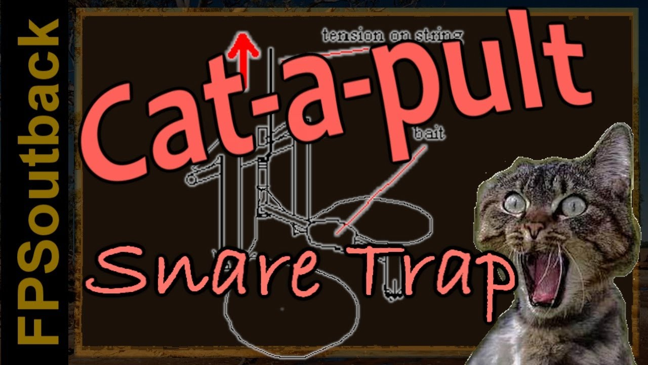 Cat A Pult Spring Snare Trap In Action Youtube