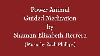 Find Your Power Animal Guided Meditation