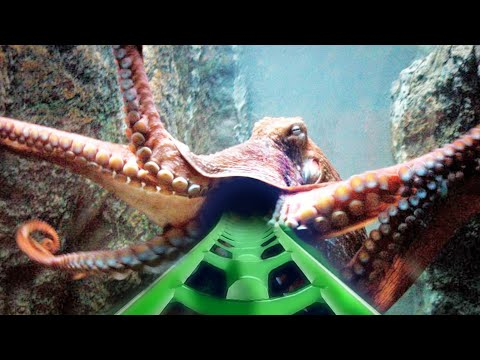🔴 VR 360° Video | Extreme ROLLER COASTER 360 VR 4K | Virtual Reality Video  3DVR360VIDEOS #360video