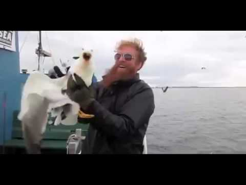 Fisherman catches seagull mid air
