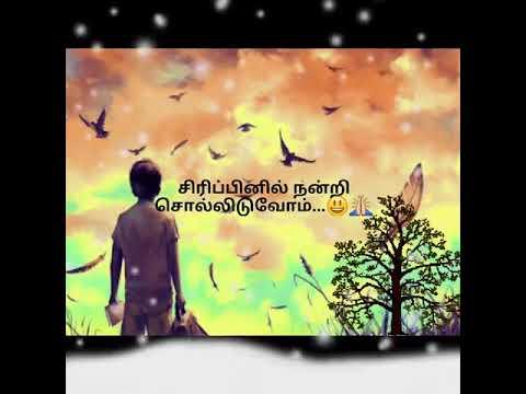 கடவுள் தந்த அழகிய வாழ்வு Song | Whatsapp Status | Maayavi Movie