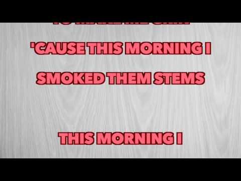 Chris Stapleton - Them Stems (Full Song Lyrics)