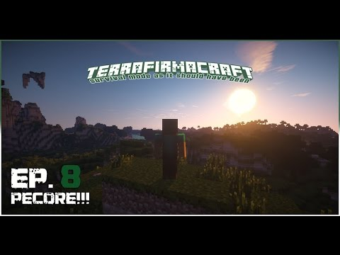Terrafirmacraft - Bassifer@TFC Ep.8 - Pecore!!!