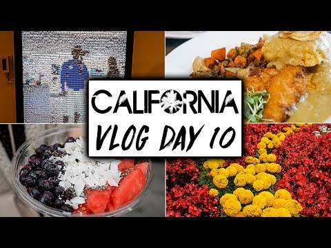 Day 10 Vegan California Travel VLOG  |  San Diego and Coronado Full Day of Eating Vloggers