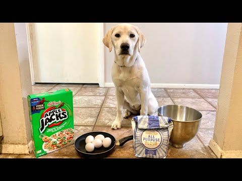 Cooking My Puppy Breakfast!