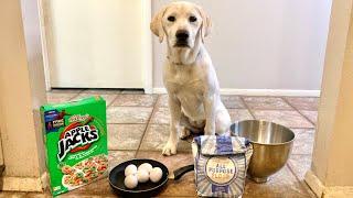 Cooking My Puppy Breakfast!
