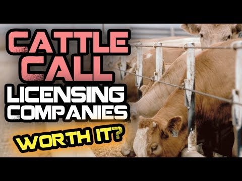 Cattle Call Music Licensing Companies - Are They Worth It?