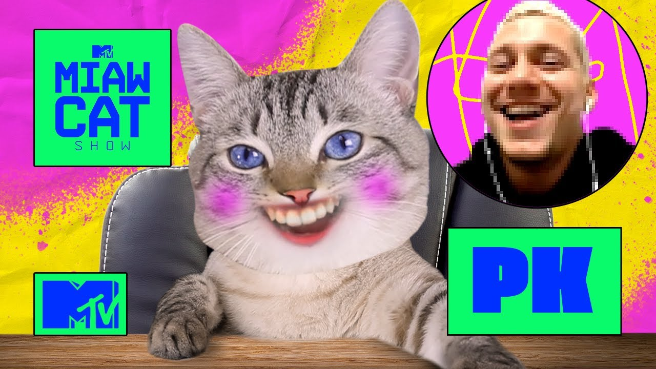 PK invade o link da rainha dos baixinhos | MTV MIAW Cat Show