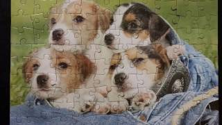 Solving the Four Cute Puppies Fun Kids Puzzle - 100 Pieces