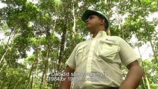 FUNDECOR- Historias del Bosque y la Gente-Carlos Miranda-