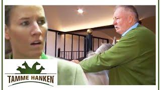 Tamme Hanken | Das Lipizzaner-Gestüt vom Stanglwirt | kabel eins