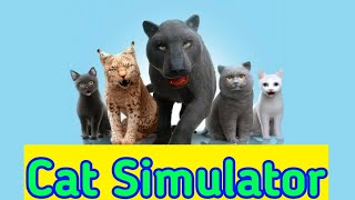 cat simulator games play online with other play in the house