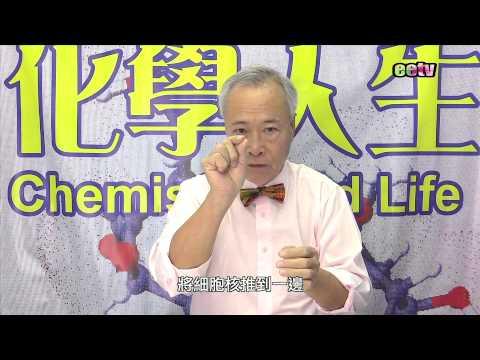徐化普博士《化學人生》都市人疾病脂肪肝的形成及解決方法