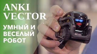 anki Vector  робот с искусственным интеллектом 12