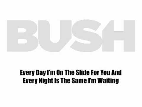 "BUSH ""All Night Doctors"" Lyric Video"