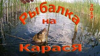 рыбалка на карася в камышах