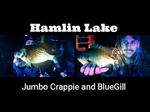Jumbo Crappie And BlueGill - Hamlin Lake Ice Fishing