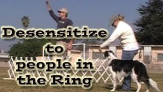 Dog Sports: Desensitize Dogs To People In The Ring