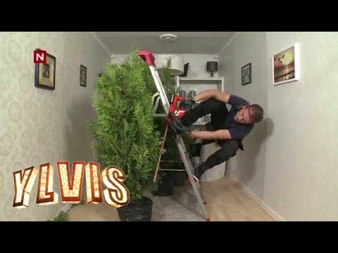 Ylvis - Det kan du vel: Klippe hekken [English subtitles]