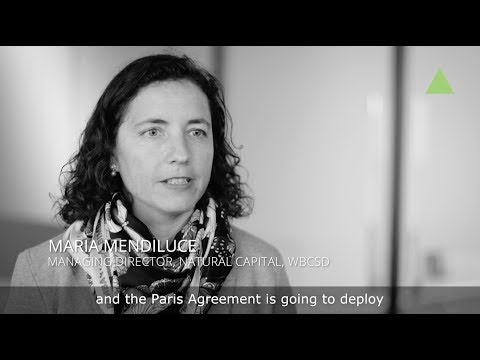 The risk to energy intensive industries - Maria Mendiluce, Managing Director, Natural Capital WBCSD
