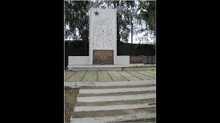 Митинг от 24.03.2018 года. Ч.16  Радий Хабиров уничтожает воинский Мемориал в д. Гольёво