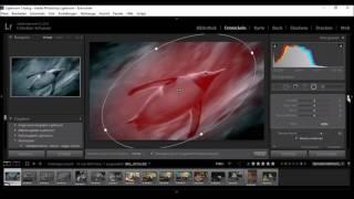 Adobe Lightroom - Radial Filter in einer Minute (#chrizschwarz)
