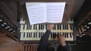 Benjamin Alard   Souvigny   Bach Goldberg   V13