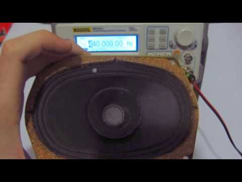 Signal Generator + Speaker (Tone generator)