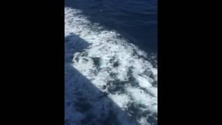 رحلة من طنجة الى الجزيرة الخضراء