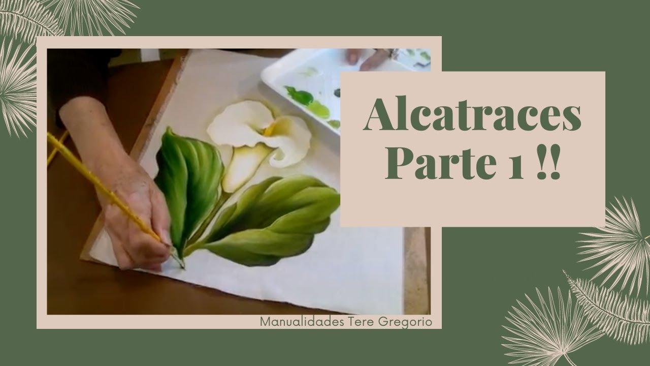 Como Pintar Alcatraces Parte 1