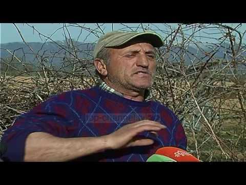 Vrasje në kufi për hashash - Top Channel Albania - News - Lajme