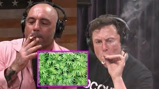Elon Musk Hitting A Blunt With Joe Rogan