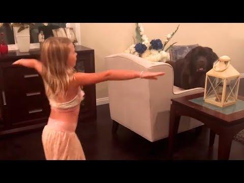 Tiny girl manages giant dog after Mom failsиз YouTube · Длительность: 50 с