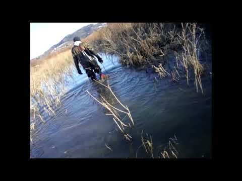 Extracting garbage from the river Dunajec in Waders and Chestwaders
